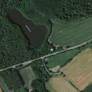 L92 Lauschiger Waldsee